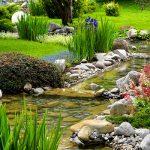Questions To Ask A Landscaper
